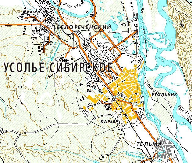 Усолье-Сибирское — город в
